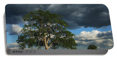 Tree With Storm Clouds Portable Battery Charger