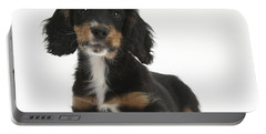 Tricolor Working Cocker Spaniel Puppy Portable Battery Charger