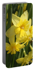 Tripartite Daffodil Portable Battery Charger by Judy Whitton