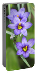 Triple Purple Portable Battery Charger by MTBobbins Photography