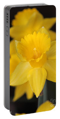 Trumpet Daffodil Named Exception Portable Battery Charger