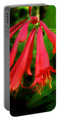 Wild Trumpet Honeysuckle Portable Battery Charger