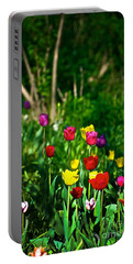 Tulip Rainbow Portable Battery Charger