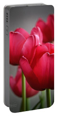 Tulips In The  Morning Light Portable Battery Charger by Mary Machare