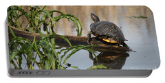 Turtle Reflection Portable Battery Charger