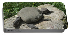 Turtle's Rock Portable Battery Charger