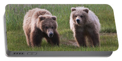 Twin Bear Cubs Portable Battery Charger