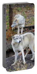 Twin Wolves Portable Battery Charger by Athena Mckinzie