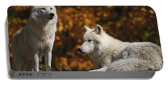 Portable Battery Charger featuring the photograph Two Arctic Wolves On Rock Hill by Wolves Only