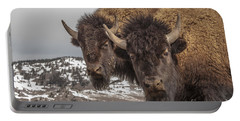Two Bison Portable Battery Charger