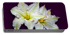 Two Clematis Flowers On Purple Portable Battery Charger