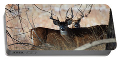 Portable Battery Charger featuring the photograph Two In The Bush by Jim Garrison
