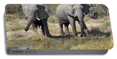 Portable Battery Charger featuring the photograph Two Male Elephants Okavango Delta by Liz Leyden
