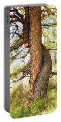 Two Pines Intertwined  Portable Battery Charger by Deborah Moen