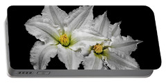 Two White Clematis Flowers On Black Portable Battery Charger
