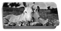 Two White Irish Donkeys Portable Battery Charger by RicardMN Photography
