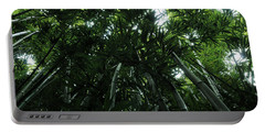 Portable Battery Charger featuring the photograph Under The Bamboo Haleakala National Park  by Vivian Christopher