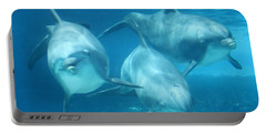 Underwater Dolphin Encounter Portable Battery Charger