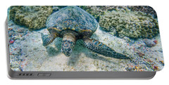 Swimming Turtle Portable Battery Charger