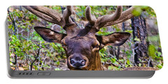 Portable Battery Charger featuring the photograph Up Close And Personal With An Elk by Bob and Nadine Johnston