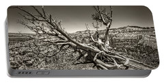 Portable Battery Charger featuring the photograph Uprooted - Bryce Canyon Sepia by Tammy Wetzel
