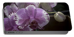 Variegated Fuscia And White Orchid Portable Battery Charger