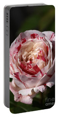 Portable Battery Charger featuring the photograph Variegated Rose by Joy Watson