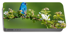 Vibrance Of Spring Portable Battery Charger