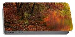 Vibrant Reflection Portable Battery Charger by Lourry Legarde
