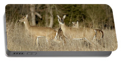 Vigilant White-tailed Deer Portable Battery Charger