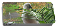 Portable Battery Charger featuring the photograph Visitor On My Balcony by Leanne Seymour