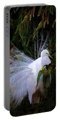 Portable Battery Charger featuring the photograph Waiting For Spring by Melinda Hughes-Berland