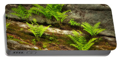 Portable Battery Charger featuring the photograph Ferns by Alana Ranney