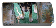 Wannabe Sled Dog In The Yukon Portable Battery Charger