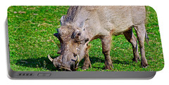 Warthog In Addo Elephant Park Near Port Elizabeth-south Africa  Portable Battery Charger