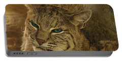 Wary Bobcat Portable Battery Charger