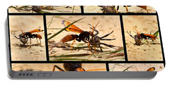 Portable Battery Charger featuring the photograph Wasp And His Kill by Miroslava Jurcik