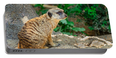 Watchful Meerkat Portable Battery Charger by Jon Woodhams