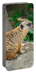 Watchful Meerkat Vertical Portable Battery Charger by Jon Woodhams