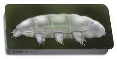 Water Bear Tardigrada - Waterbear Tardigrade  - Scientific Illustration Portable Battery Charger
