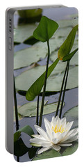 Water Lily In Bloom Portable Battery Charger