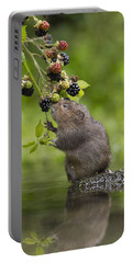 Water Vole Eating Blackberries Kent Uk Portable Battery Charger
