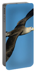 Waved Albatross Diomedea Irrorata Portable Battery Charger by Panoramic Images