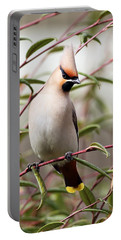 Waxwing Portable Battery Charger