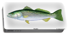 Weakfish Portable Battery Charger