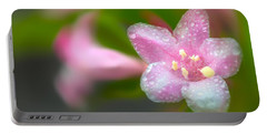 Weigela In Spring Portable Battery Charger