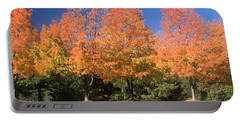 Portable Battery Charger featuring the photograph Welcome Autumn by Gordon Elwell