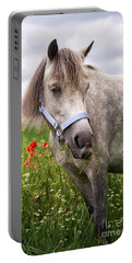 Welsh Pony Lulu Portable Battery Charger
