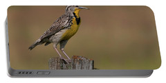 Western Meadowlark.. Portable Battery Charger by Nina Stavlund
