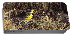 Western Meadowlark Portable Battery Charger by Steven Ralser